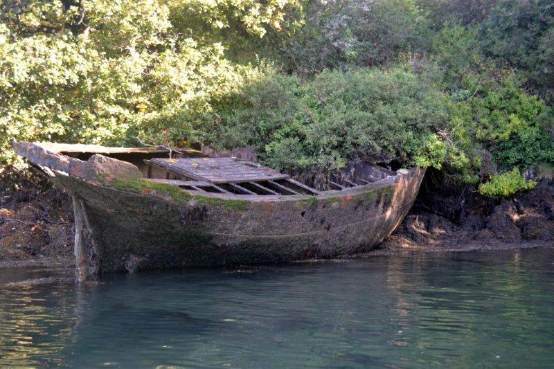 Mystery of the Shipwreck solved!