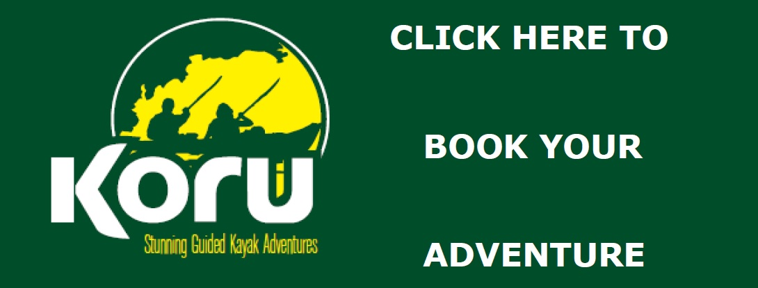 Click Here to Book Logo