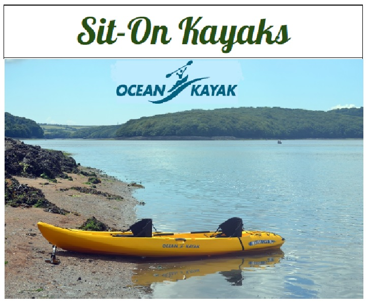 Thinking of buying a kayak?