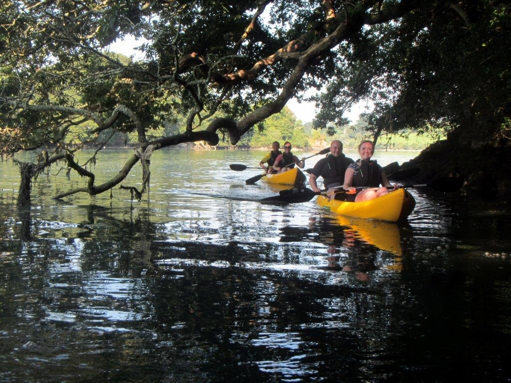 Kayaking under oak trees on Frenchman's Creek