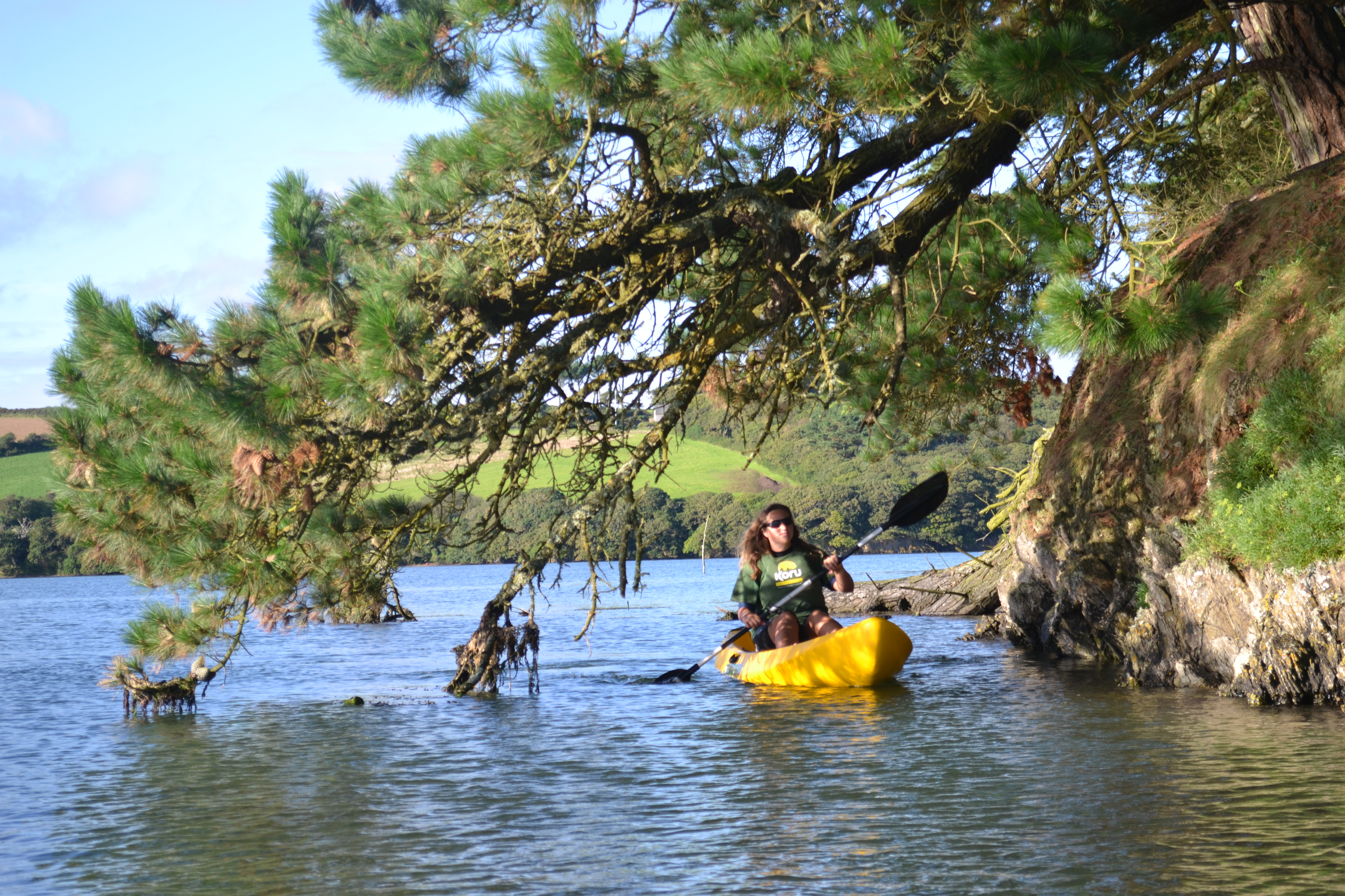 Kayaking under pine trees, planted to protect Powder's house from Northerly winds