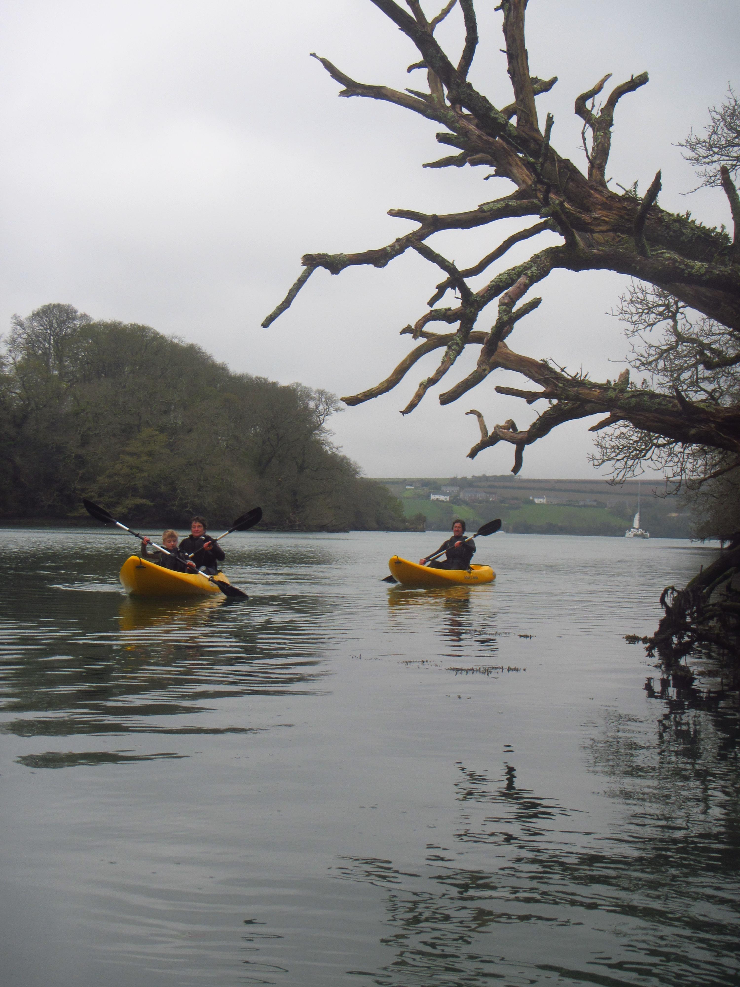 Frenchmans Creek Kayak Adventure, Cornwall, Koru Kayaking