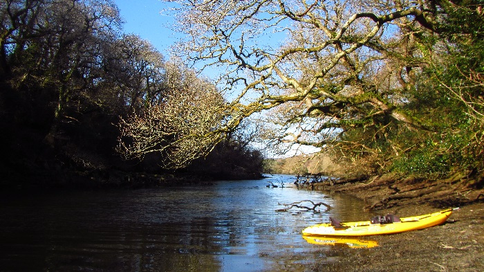 Frenchmans Creek, Koru Kayaking, Conrwall, Helford River