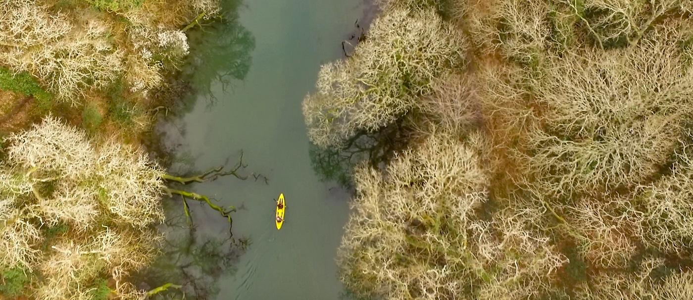 Daphne du Maurier's Honeymoon destination – Frenchman's Creek