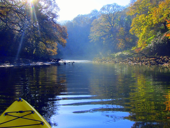 Autumnal colours kayaking on The Helford