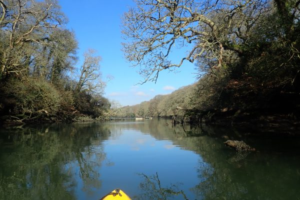 Kayaking on Frenchman's Creek